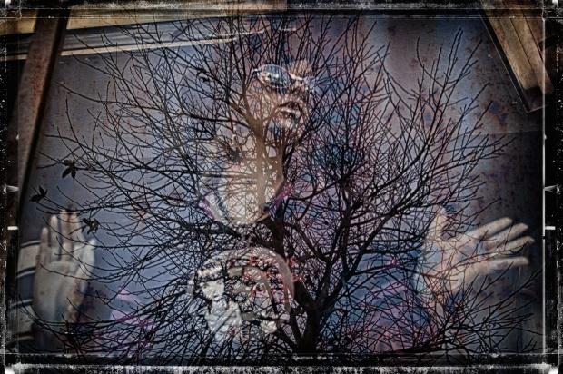 2014-03-24-_MG_4066_HDR-StephanieRoberts-ObsessiveHobbyist.com (2)